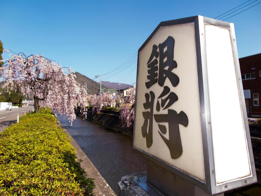 天童 倉津川の桜並木