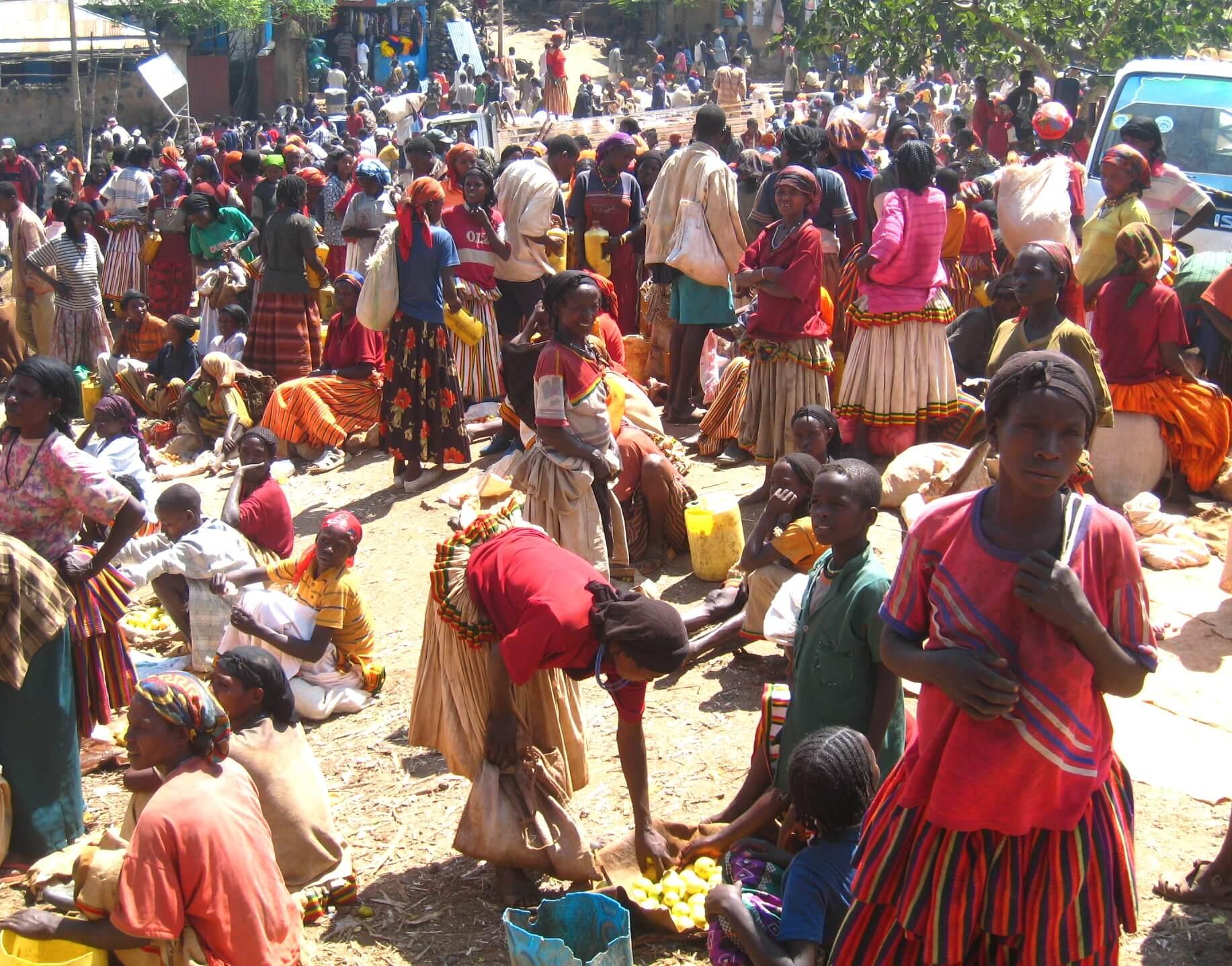 エチオピア ジンカ