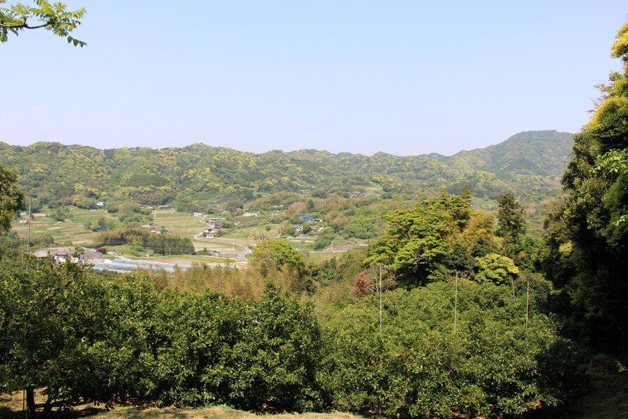 富山 山道からの景色