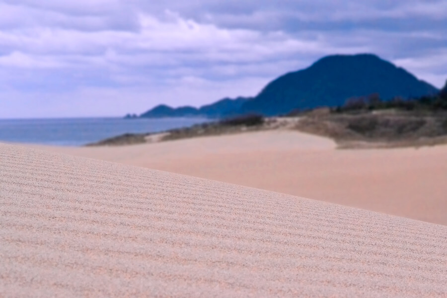 鳥取砂丘風紋