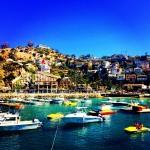 ロサンゼルスから船で1時間!非日常のリゾート地サンタカタリナ島
