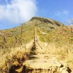 達成感が癖になる!? ハワイを一望できる絶景ハードトレッキング
