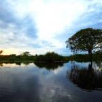 南米アマゾン川でトムソーヤ体験!ピラニア釣りとピラニアランチはいかが?