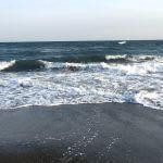 【水温調査】4月ってほぼ夏だし、もう水着で海に入れるんじゃないの?! in 湘南
