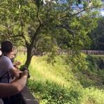 オーストラリアが誇る世界最古の熱帯雨林へ!飲んだり寝たり!キュランダ高原鉄道に揺られて行こう!