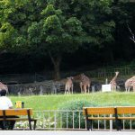 イケメンに会える!?東山動植物園の人気者に迫る