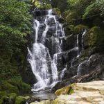 大自然と一体になる!? 福岡の自然を満喫するなら糸島は外せない! 滝壺で涼み、森の空中散歩を楽しもう!