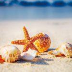 関西の美しいビーチ教えます!この夏、ちょっと足を伸ばして行けるビーチで夏の思い出作っちゃおう!