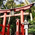 恋に効く神社?!新潟最大のパワースポット!彌彦神社で心身ともにリフレッシュしたい!