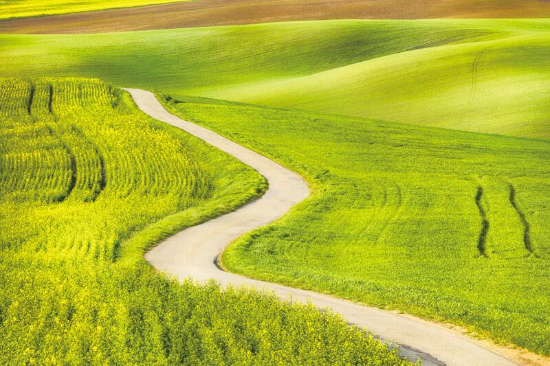 モラヴィア大草原の道