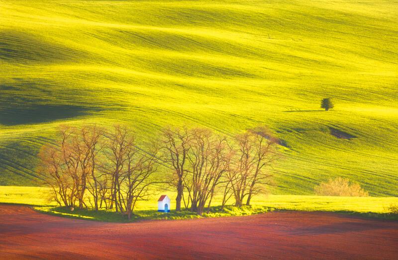 風にたなびくモラヴィア大草原