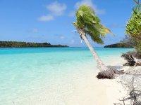ニューカレドニアのビーチ