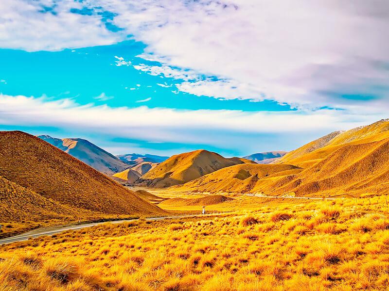 ニュージーランド-黄葉-イメージ