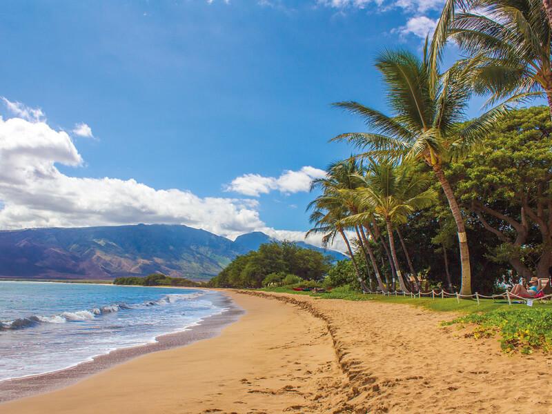 ハワイ・ビーチ