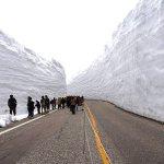 春だけしか見られない絶景!立山黒部アルペンルートに現れる雪の壁「雪の大谷」を体験しよう