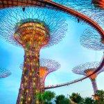 シンガポールの人気スポット!超巨大植物園「ガーデンズ・バイ・ザ・ベイ」がすごい!