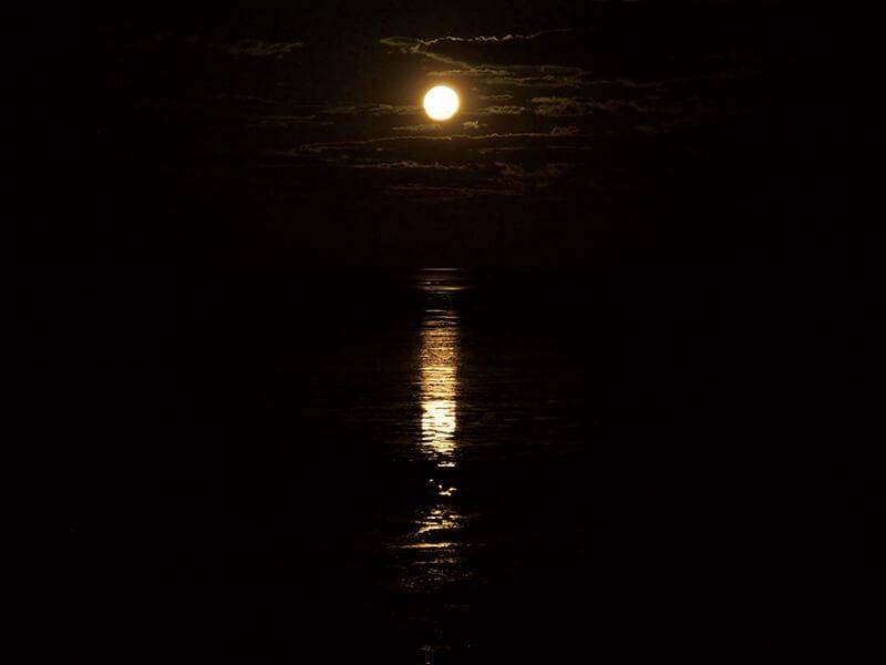 「月への階段」