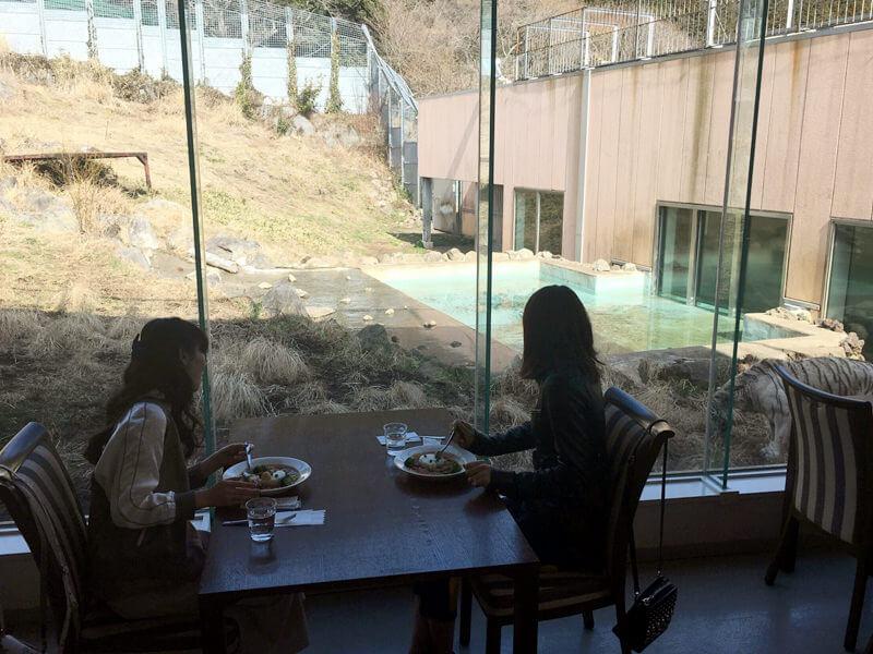 伊豆アニマルキングダム|左から福原遥と山崎紘菜 ©TBS