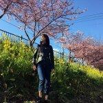 山崎紘菜と福原遥が伊東・河津など早春の東伊豆へ!早咲きで知られる河津桜も堪能♪