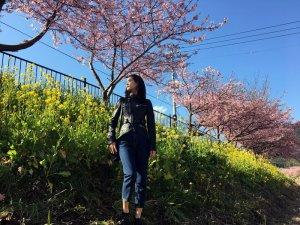 河津桜|山崎紘菜 ©TBS