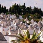 トンガリ屋根の家が軒を連ねる可愛い町!南イタリアの「アルベロベッロ」に行ってみよう!