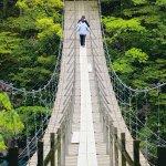 ドキドキがたまらない♪静岡でオススメのスリル満点吊り橋3選◎
