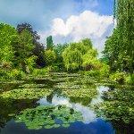 モネが夢見た青い睡蓮も! 高知県の北川村「モネの庭」マルモッタンが美しい!