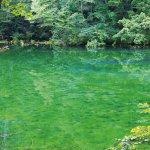 まさに秘境!!濁ることのない水から成る限りなく美しい神秘的な池とは!?