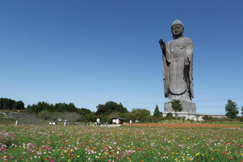 デートにおすすめ?! 世界最大の青銅製大仏 、茨城県牛久市の牛久大仏!