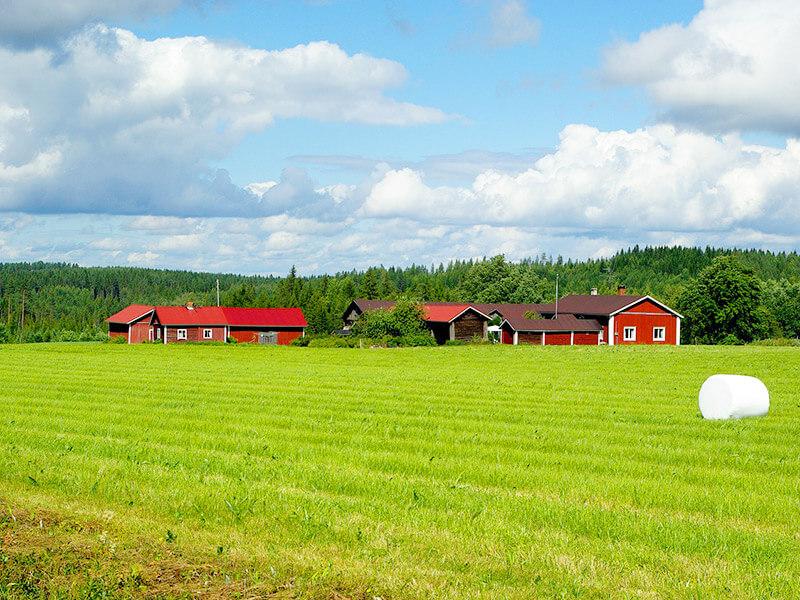 フィンランドの田舎町