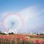 大人も子供も大はしゃぎ♪福岡の海に囲まれた素敵な公園「海の中道海浜公園」で、休日をエンジョイしよう!!
