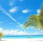 海外でマリンスポーツしたいなら南国の楽園セブ島へ行こう!初心者もダイバーも大満足!