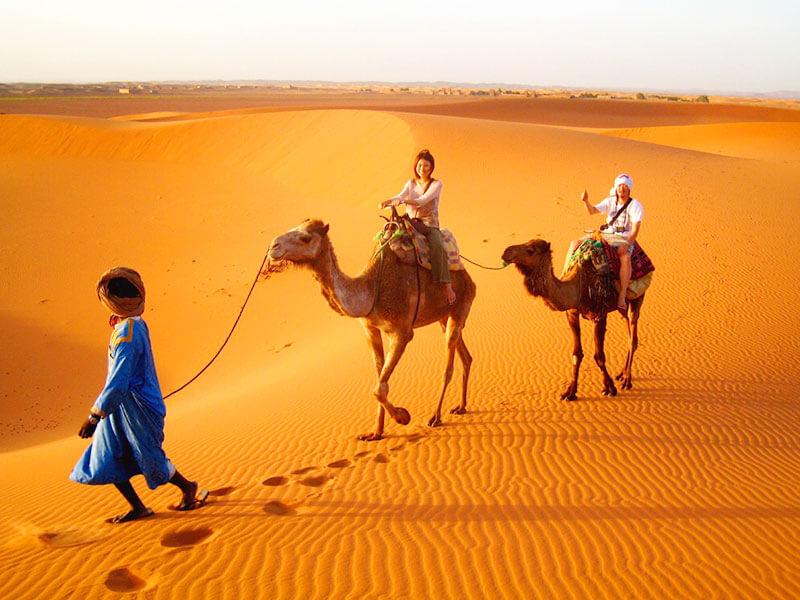 ラクダで観光