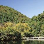 秋はもちろん、四季を通じて楽しめるもみじ観賞の穴場スポット、滋賀県のもみじ池