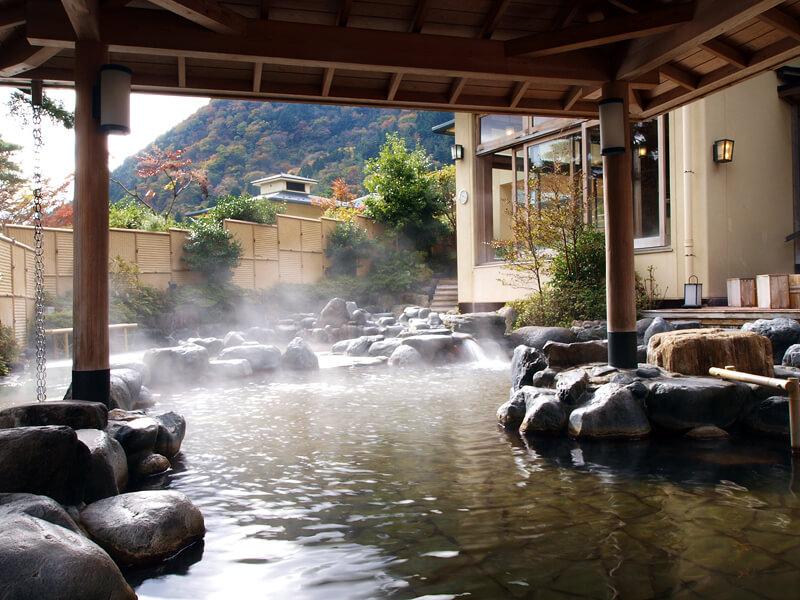貸切風呂を含む8種類のお風呂に加えサウナも完備「森の湯」