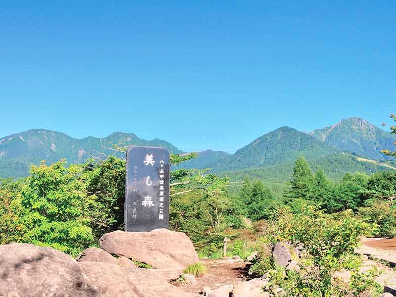 八ヶ岳/美し森