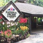 シンガポール初の世界遺産 美しい植物園「シンガポールボタニックガーデン」ってどんなところ?