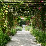 美しき英国庭園「アンディ&ウィリアムス ボタニックガーデン」で素敵なひとときを♡