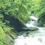 日帰りハイキングで森林セラピー♡5段に流れるエメラルドの滝に出会える西沢渓谷