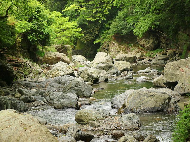 摂津峡川べりランチ