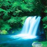 伊豆に行ったらここも巡ってみよう♪河津七滝で涼みたい!!