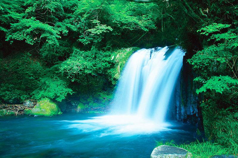 静岡県・伊豆に行ったらここも巡ってみよう♪河津七滝で涼みたい!!
