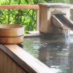 人気避暑地の源泉かけ流しの宿「松川屋那須高原ホテル」で温泉三昧♪