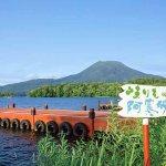 夢みたいにキレイ♡北海道の短い夏を彩る「阿寒湖まりも夏希灯」