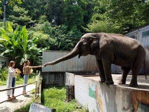 宇都宮動物園。左から舟山久美子、池田美優 ©TBS