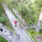 シンガポールで森林浴?!全長9kmの「サザン・リッジズ」のお散歩ルートが良い感じ♪
