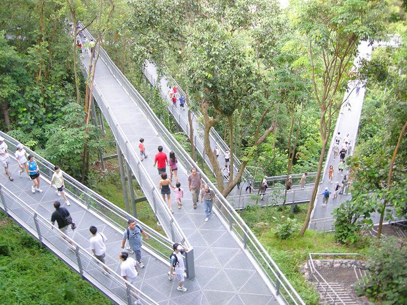 テロック・ブランガ・ヒル・パークのつり橋