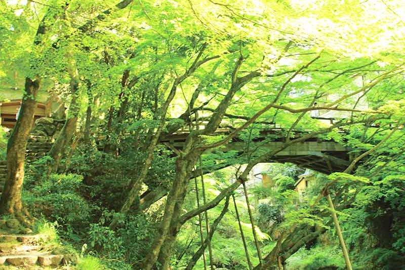 北陸随一の渓谷美!石川県の名湯・山中温泉にある名所「こおろぎ橋」をご紹介!