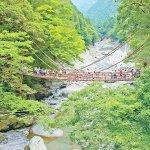 徳島県へ行くなら行ってみて!大歩危&祖谷周辺の人気スポットをご紹介♪