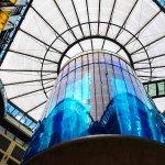 客室から眺められる巨大水槽?!ベルリンにある「ラディソン・ブル・ホテル」が凄い!